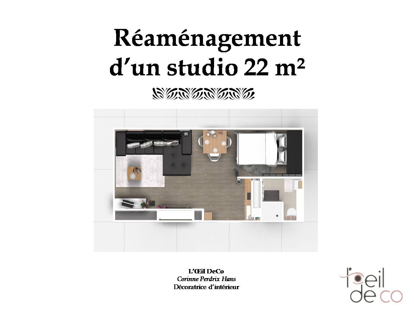 l 39 oeil de co am nagement d un studio de 22m. Black Bedroom Furniture Sets. Home Design Ideas